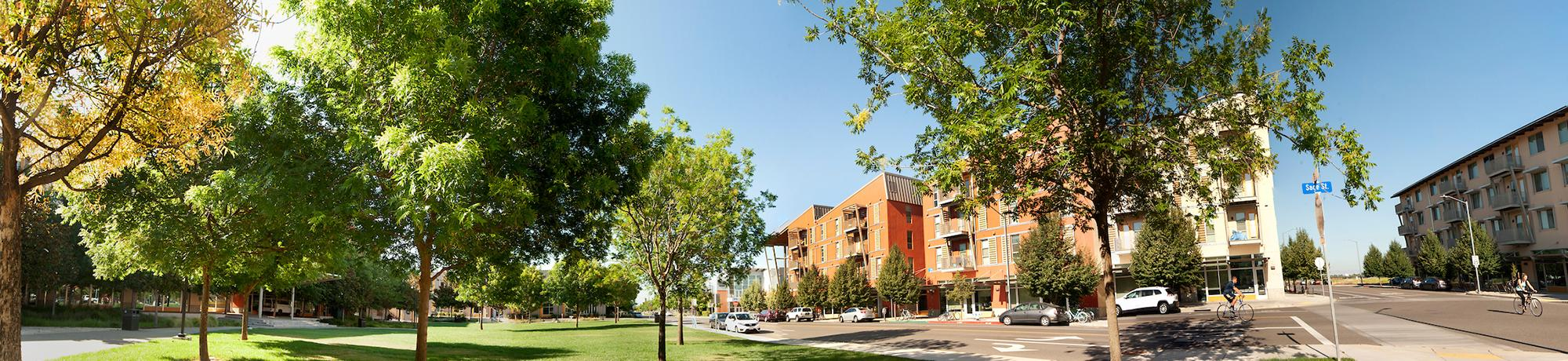 panorama of uc davis west village student housing